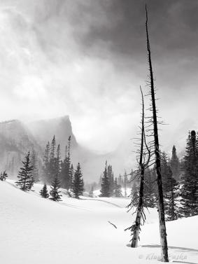 Winter Vale - Rocky Mountain National Park, Colorado