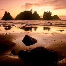 Point of Arches - Olympic National Park, Washington
