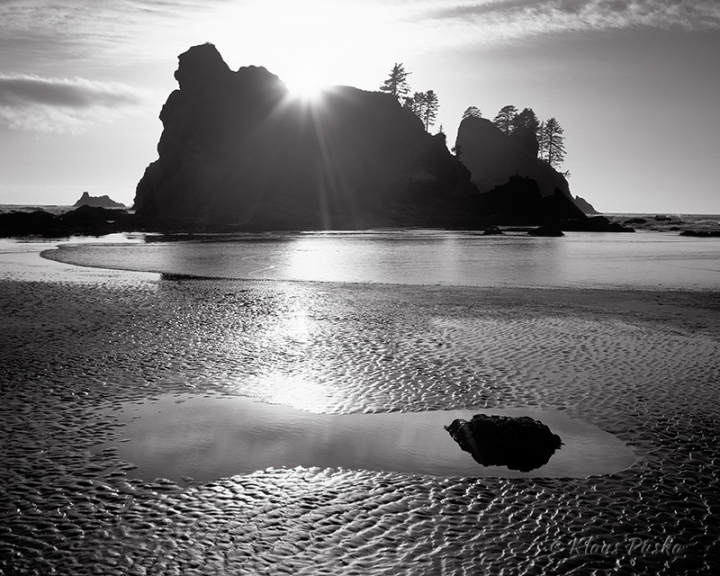 Point of Arches Tide Pool - Olympic National Park, Washington