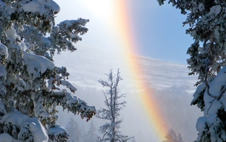 Frozen Rainbow