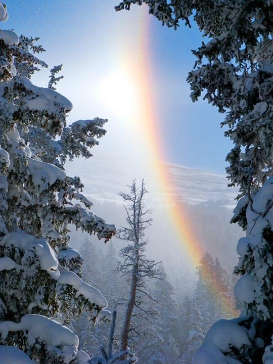 Frozen Rainbow