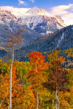 Cimarron Autumn - San Juan Mountains, Colorado