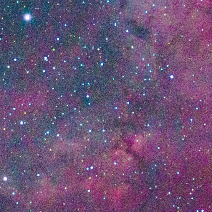 Rosette Nebula - Single Frame Processed 100% Crop
