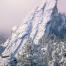 Winter Sentinel - Colorado