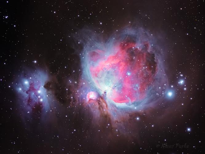 Orion Nebula - Astrophoto