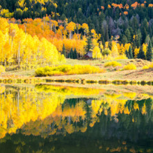 Autumn Mirror - Colorado