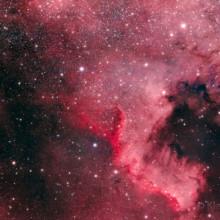 North America Nebula - Astrophoto